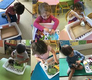 Activités autonomes type Montessori chez les PS